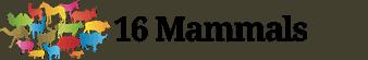 Logo of 16 Mammals